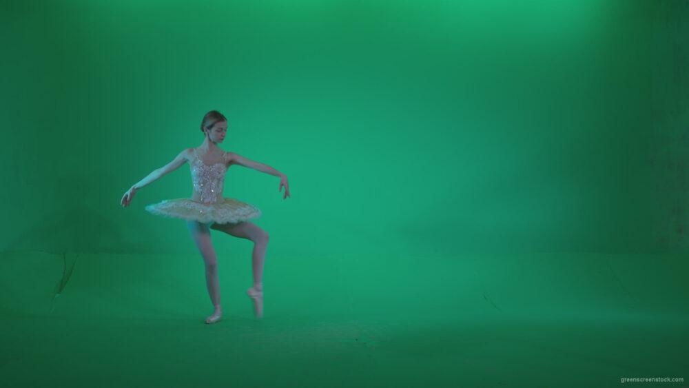 vj video background Ballet-White-Swan-s10-Green-Screen-Video-Footage_003