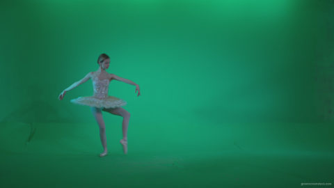vj video background Ballet-White-Swan-s10-Green-Screen-Video-Footage_003