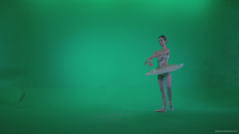 vj video background Ballet-White-Swan-s11-Green-Screen-Video-Footage_003