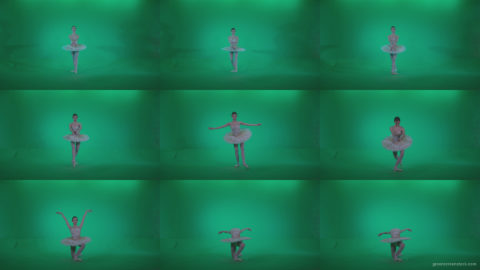 Ballet-White-Swan-s12-Green-Screen-Video-Footage Green Screen Stock