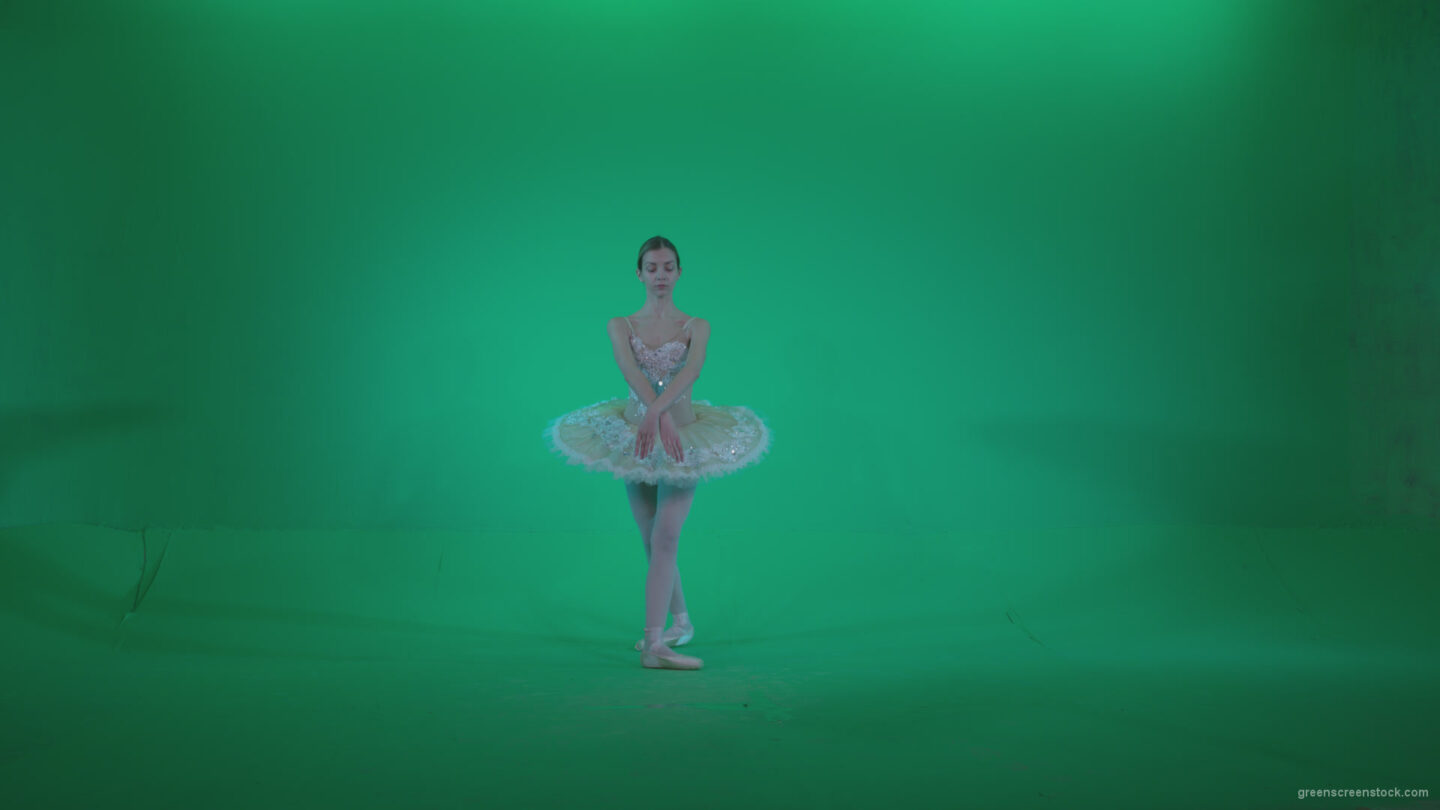 vj video background Ballet-White-Swan-s12-Green-Screen-Video-Footage_003