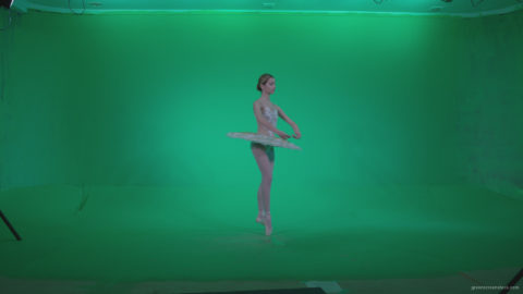 vj video background Ballet-White-Swan-s13-new-Green-Screen-Video-Footage_003