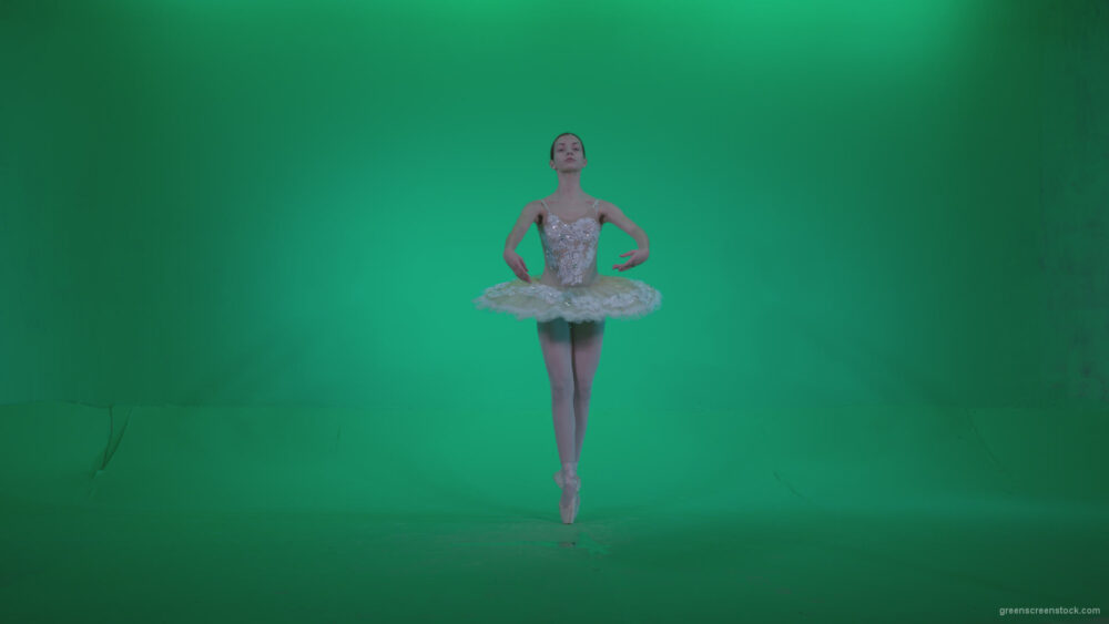 vj video background Ballet-White-Swan-s14-Green-Screen-Video-Footage_003