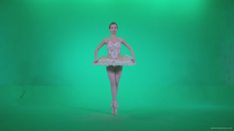 Ballet-White-Swan-s1_001 Green Screen Stock