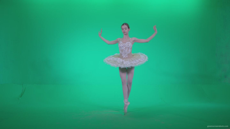 vj video background Ballet-White-Swan-s1_003
