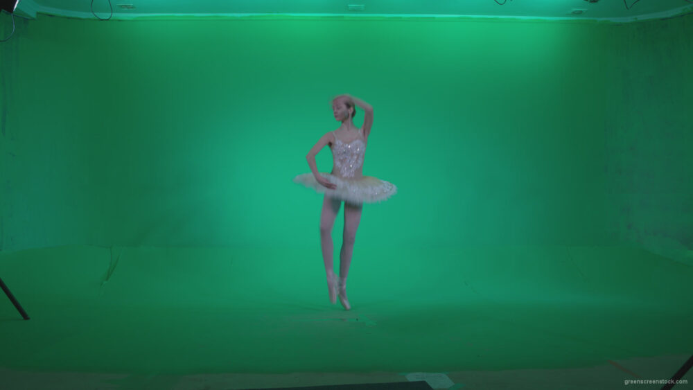vj video background Ballet-White-Swan-s2_003