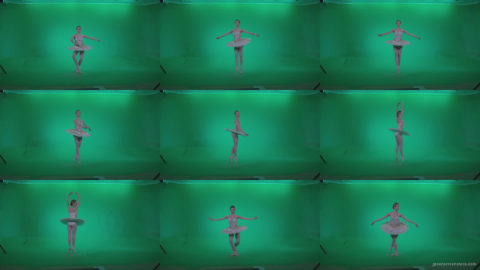 Ballet-White-Swan-s3 Green Screen Stock