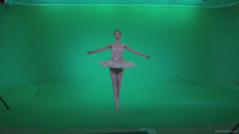 vj video background Ballet-White-Swan-s3_003