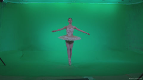 vj video background Ballet-White-Swan-s3_003