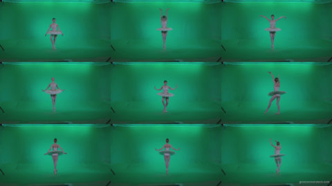 Ballet-White-Swan-s4 Green Screen Stock