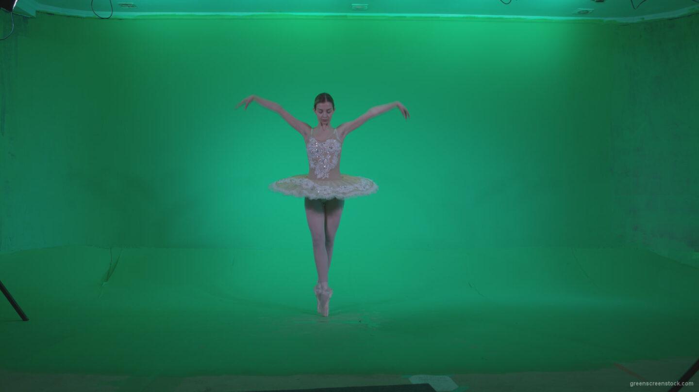 vj video background Ballet-White-Swan-s4_003