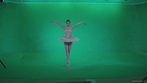 vj video background Ballet-White-Swan-s4_003
