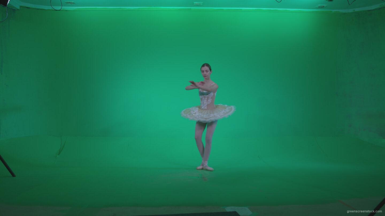 vj video background Ballet-White-Swan-s5-Green-Screen-Video-Footage_003