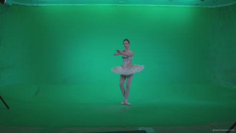vj video background Ballet-White-Swan-s5-Green-Screen-Video-Footage_003