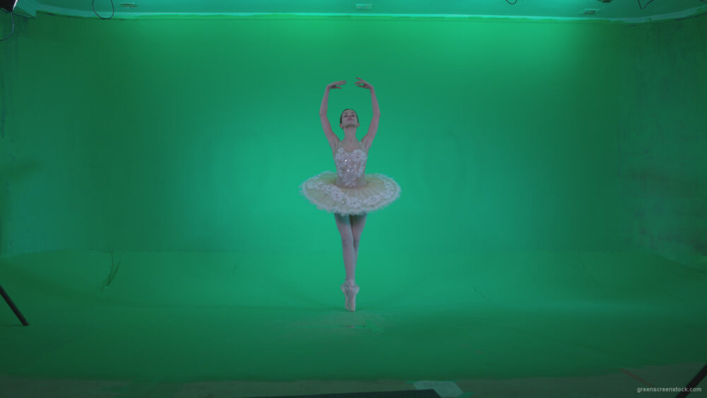 vj video background Ballet-White-Swan-s6-Green-Screen-Video-Footage_003