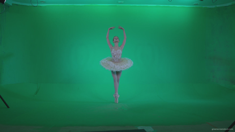 vj video background Ballet-White-Swan-s6-Green-Screen-Video-Footage_003