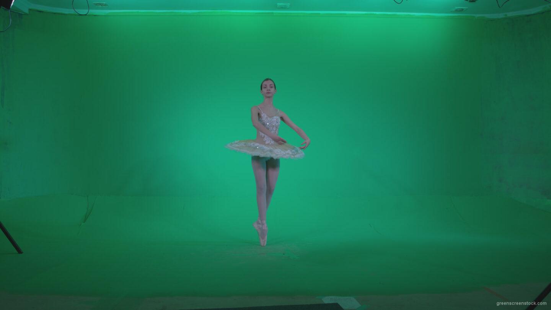 vj video background Ballet-White-Swan-s7-Green-Screen-Video-Footage_003