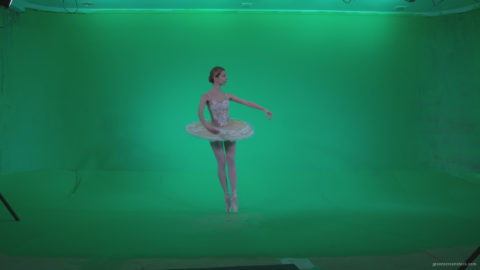 vj video background Ballet-White-Swan-s8-Green-Screen-Video-Footage_003