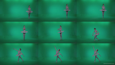 Ballet-White-Swan-s9-Green-Screen-Video-Footage Green Screen Stock