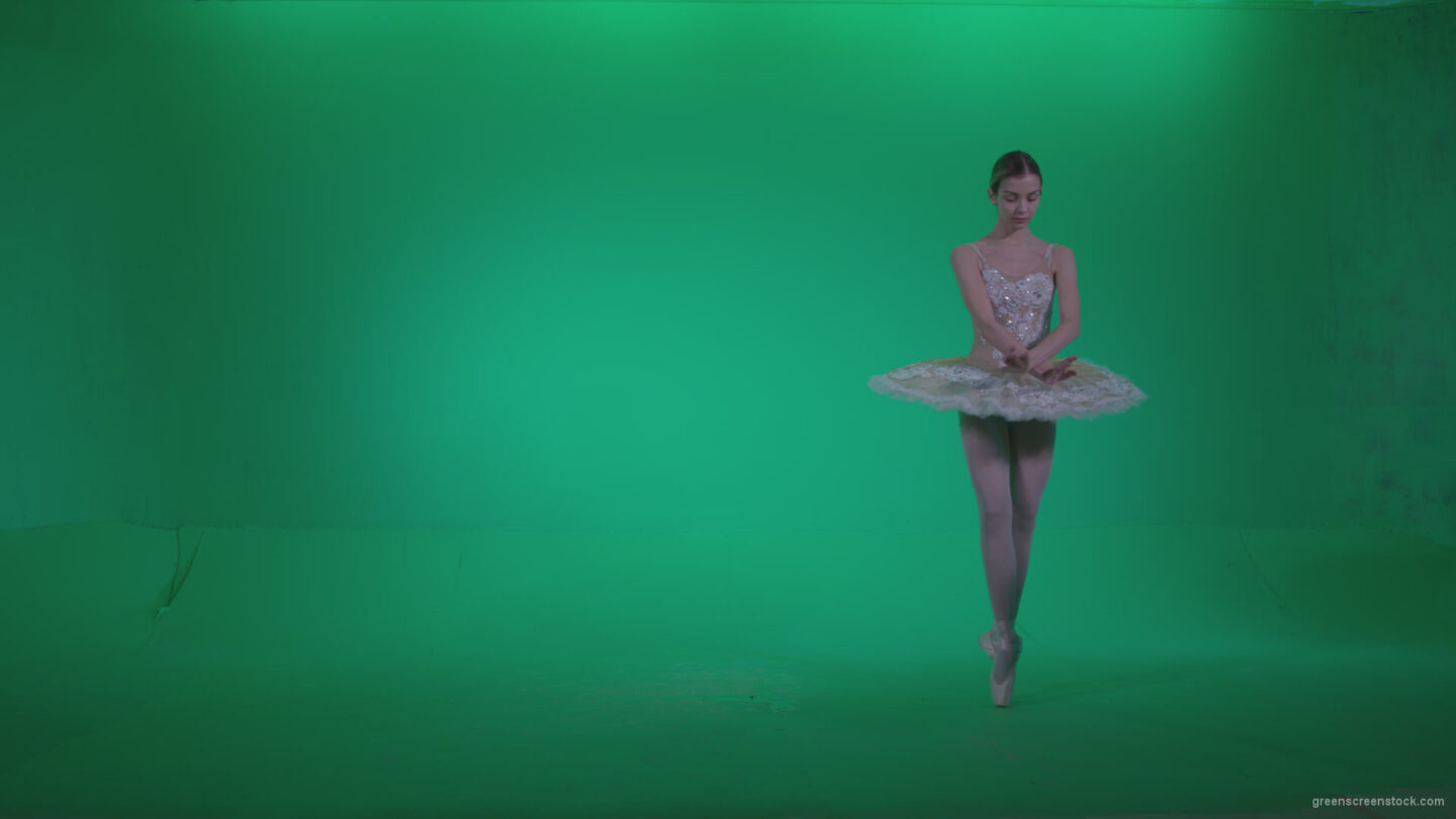 vj video background Ballet-White-Swan-s9-Green-Screen-Video-Footage_003