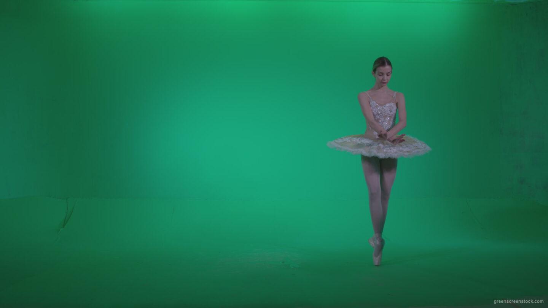 vj video background Ballet-White-Swan-s9-Green-Screen-Video-Footage_003