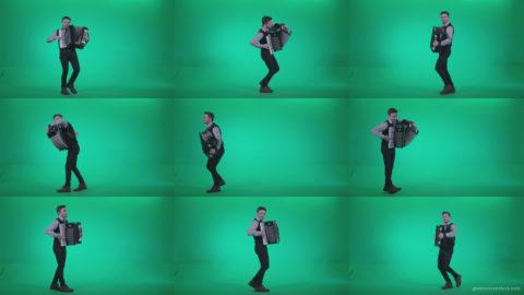 Black-Accordion-Virtuoso-performs-ba3 Green Screen Stock