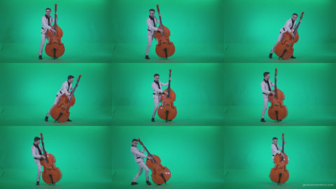 Contrabass-Jazz-Performer-j11-Green-Screen-Video-Footage Green Screen Stock