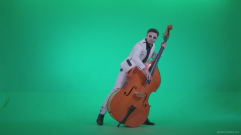 vj video background Contrabass-Jazz-Performer-j11-Green-Screen-Video-Footage_003