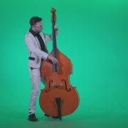 Contrabass-Jazz-Performer-j12-Green-Screen-Video-Footage_002 Green Screen Stock