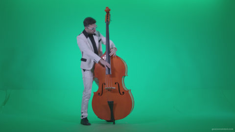 vj video background Contrabass-Jazz-Performer-j12-Green-Screen-Video-Footage_003