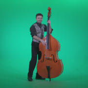 Contrabass-Jazz-Performer-j13-Green-Screen-Video-Footage_002 Green Screen Stock