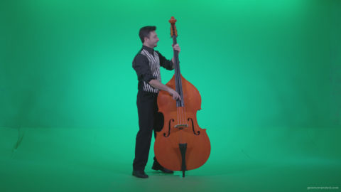 vj video background Contrabass-Jazz-Performer-j13-Green-Screen-Video-Footage_003