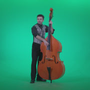 Contrabass-Jazz-Performer-j13-Green-Screen-Video-Footage_004 Green Screen Stock