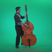 Contrabass-Jazz-Performer-j13-Green-Screen-Video-Footage_005 Green Screen Stock