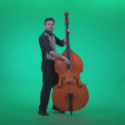 Contrabass-Jazz-Performer-j13-Green-Screen-Video-Footage_007 Green Screen Stock