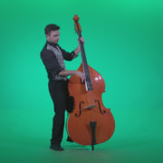 Contrabass-Jazz-Performer-j13-Green-Screen-Video-Footage_008 Green Screen Stock