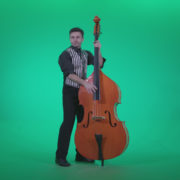 Contrabass-Jazz-Performer-j13-Green-Screen-Video-Footage_009 Green Screen Stock