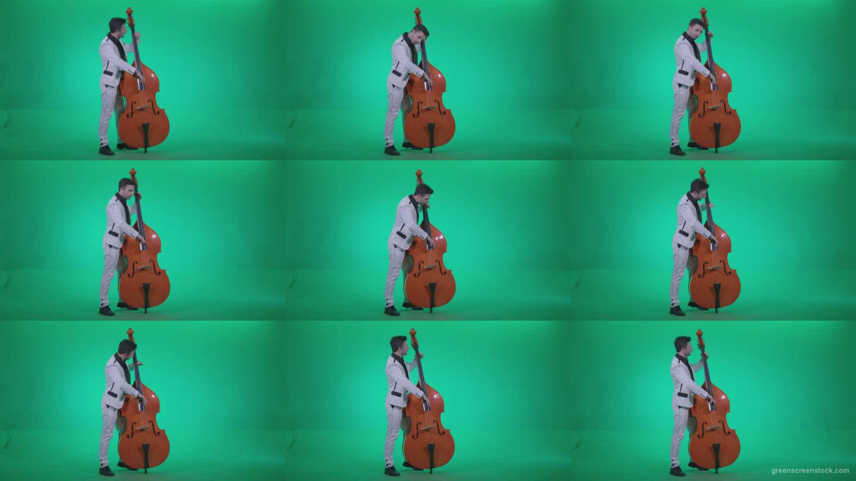 Contrabass-Jazz-Performer-j2 Green Screen Stock