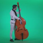Contrabass-Jazz-Performer-j2_001 Green Screen Stock