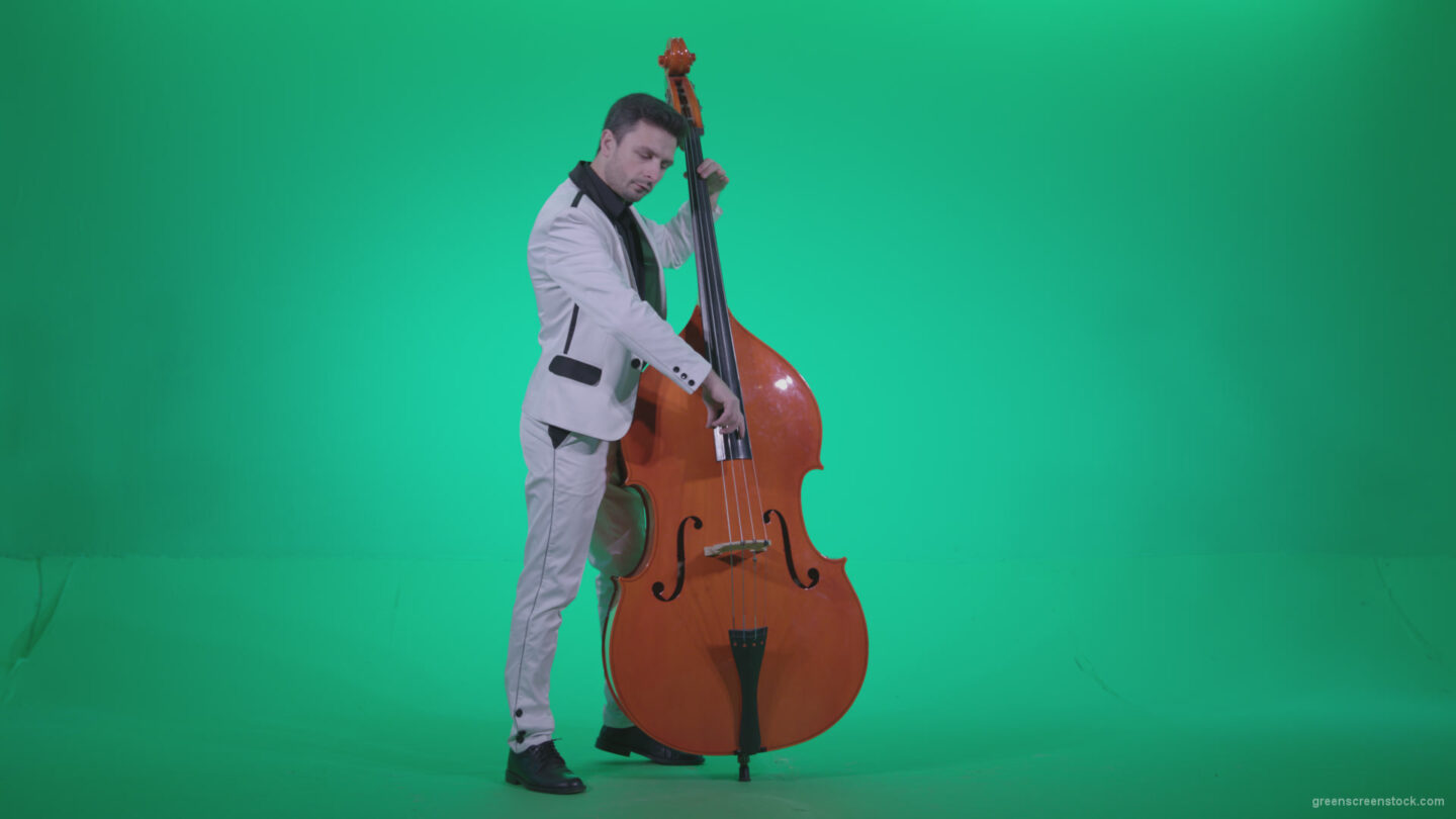vj video background Contrabass-Jazz-Performer-j2_003