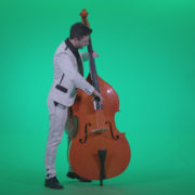Contrabass-Jazz-Performer-j2_006 Green Screen Stock