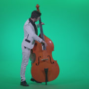 Contrabass-Jazz-Performer-j2_007 Green Screen Stock