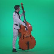 Contrabass-Jazz-Performer-j2_008 Green Screen Stock
