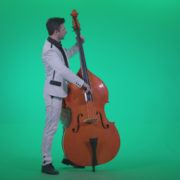 Contrabass-Jazz-Performer-j2_009 Green Screen Stock