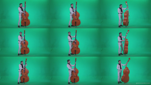 Contrabass-Jazz-Performer-j3 Green Screen Stock