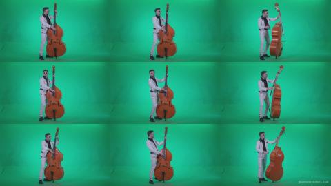 Contrabass-Jazz-Performer-j3 Green Screen Stock
