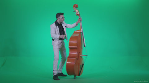 vj video background Contrabass-Jazz-Performer-j3_003