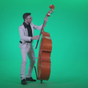 Contrabass-Jazz-Performer-j3_006 Green Screen Stock