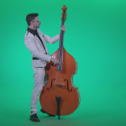Contrabass-Jazz-Performer-j3_008 Green Screen Stock