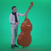 Contrabass-Jazz-Performer-j3_009 Green Screen Stock